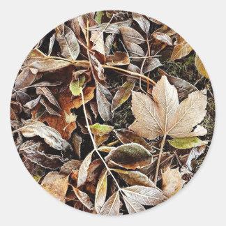 Adesivo Redondo Folhas de outono