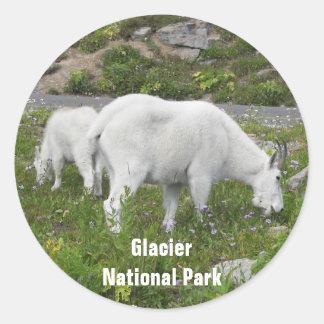 Adesivo Redondo Foto das cabras de montanha do parque nacional de