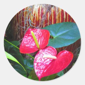 Adesivo Redondo Fotos florais da flor dos jardins de Longwood