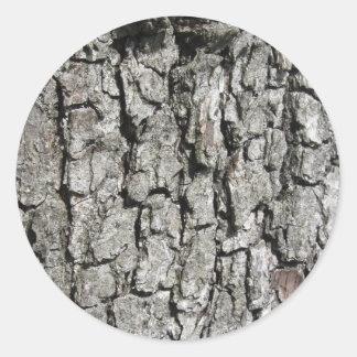 Adesivo Redondo Fundo da textura do latido de árvore da pera