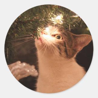 Adesivo Redondo Gatos e luzes - gato do Natal - árvore de Natal