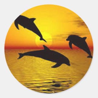 Adesivo Redondo golfinho