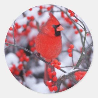 Adesivo Redondo Homem cardinal do norte, inverno, IL