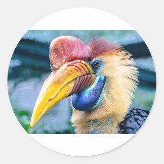 Adesivo Redondo Hornbill vermelho e amarelo