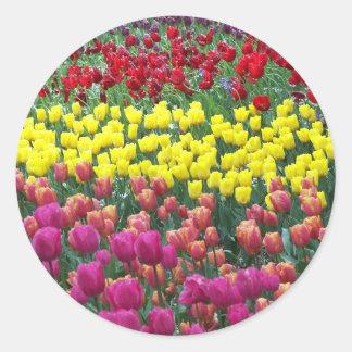Adesivo Redondo Jardim da tulipa floral