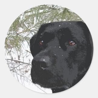 Adesivo Redondo Labrador preto - pinhos Sparkling