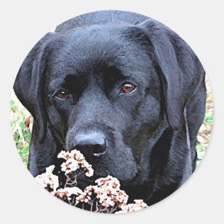 Adesivo Redondo Labrador preto - tome o tempo