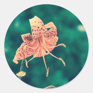 Adesivo Redondo laranja lilly crossprocess4