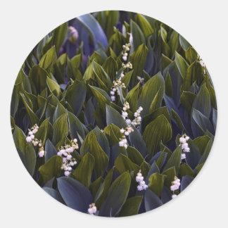 Adesivo Redondo Lírio do remendo da flor do vale com matiz azul