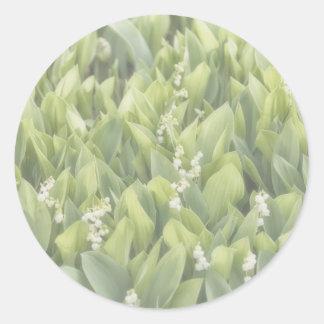 Adesivo Redondo Lírio do remendo da flor do vale na névoa