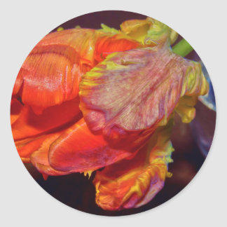Adesivo Redondo Magic Conversas Tulip