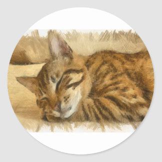 Adesivo Redondo Mentira deixada dos gatos do sono