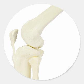 Adesivo Redondo Modelo da articulação do joelho do pé humano