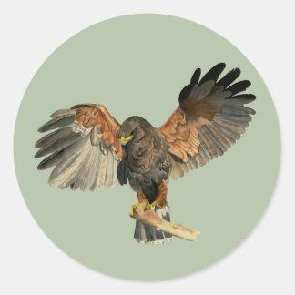 Adesivo Redondo O Flapping do falcão voa a pintura da aguarela