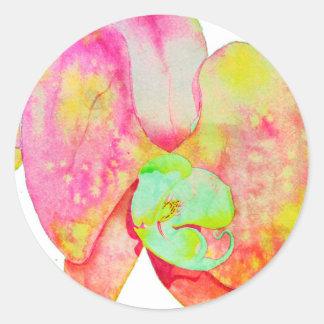 Adesivo Redondo Orquídeas das caraíbas