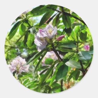 Adesivo Redondo Os rododendros estão na flor