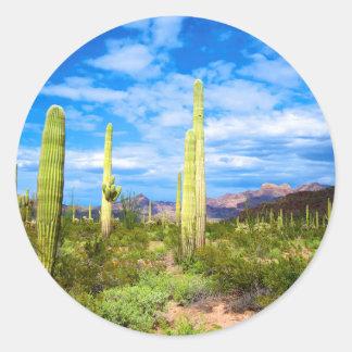 Adesivo Redondo Paisagem do cacto do deserto, arizona