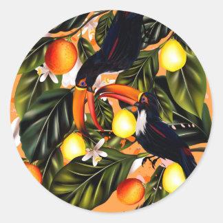 Adesivo Redondo Paraíso tropical. Toucans e citrino