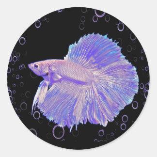 Adesivo Redondo Peixes de combate roxos iridescentes