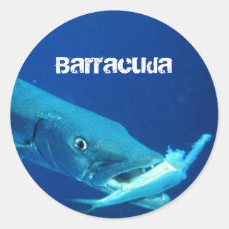 Adesivo Redondo Peixes do Barracuda