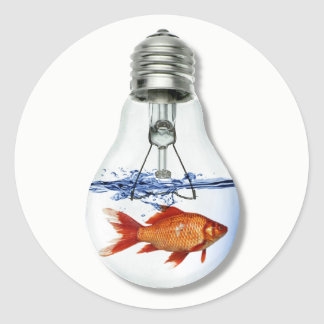 Adesivo Redondo Peixes em um aquário do aquário | da ampola