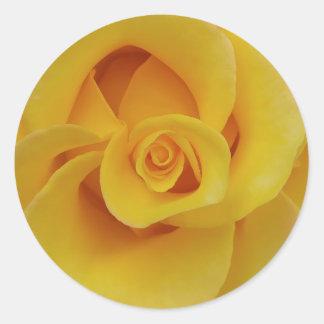 Adesivo Redondo Pétalas cor-de-rosa amarelas românticas