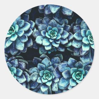 Adesivo Redondo Plantas azuis e verdes do Succulent