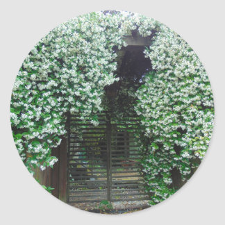 Adesivo Redondo Porta coberta no jasmim