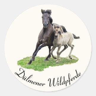 Adesivo Redondo Potro selvagem da égua do cavalo de Dulmen -