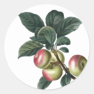 Adesivo Redondo Ramo de maçãs vermelhas