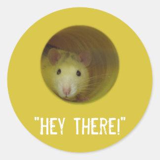 Adesivo Redondo Rato bonito no animal engraçado do furo