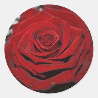 Adesivo Redondo Rosa vermelha - bordadores