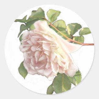 Adesivo Redondo Rosas empoeirados do marfim