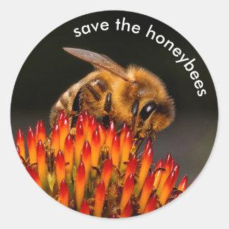 Adesivo Redondo Salvar as abelhas que Pollinating o Echinacea