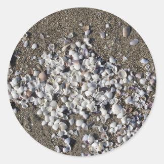 Adesivo Redondo Seashells na areia. Fundo da praia do verão
