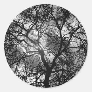 Adesivo Redondo Silhueta dramática da árvore