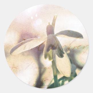 Adesivo Redondo Snowdrop 01.01q lírico