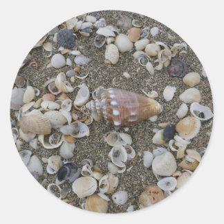 Adesivo Redondo Tesouro do Seashell do Conch