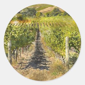 Adesivo Redondo Vinhedo do vinho de Califórnia