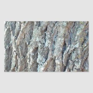 Adesivo Retangular Árvore de cinza de Texas