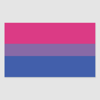 Adesivo Retangular Bandeira do Bi