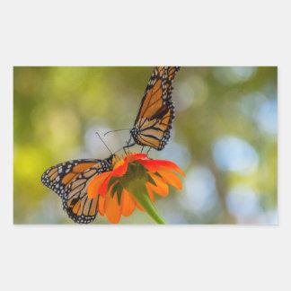 Adesivo Retangular Borboletas de monarca em Wildflowers