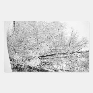 Adesivo Retangular Brancos do inverno