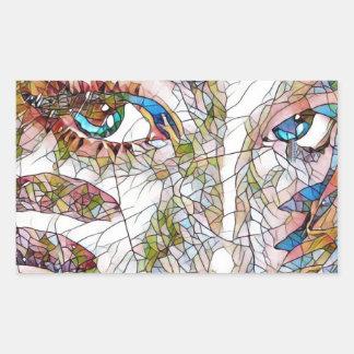 Adesivo Retangular Características artísticas raras do Facial do