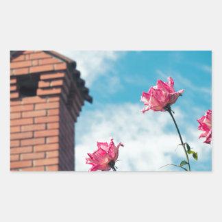 Adesivo Retangular Chaminé e rosas selvagens