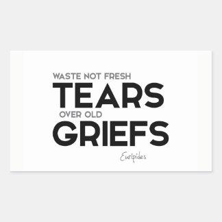Adesivo Retangular CITAÇÕES: Euripides: Sofrimentos velhos