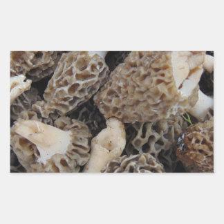 Adesivo Retangular Cogumelos do Morel