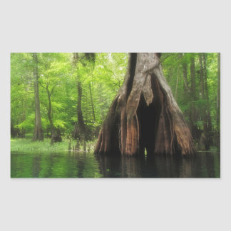 Adesivo Retangular Cypress oco maciço