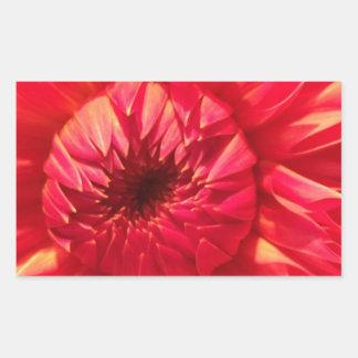 Adesivo Retangular Dália cor-de-rosa