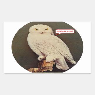 Adesivo Retangular desenho branco da coruja